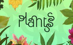 Plantsss3, dándole vida a los jardines tristones.