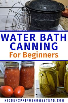 Water bath canning is very simple to learn but at time you may run into a problem. Here's a list of potential problems and their solutions to water bath canning. If you are just getting started with water bath canning you need to read this first! Canning Pickles, Canning Lids, Canning 101, Jar Lids, Canning Pears, Ball Canning Jars, Canning Food Preservation, Preserving Food, Home Canning Recipes