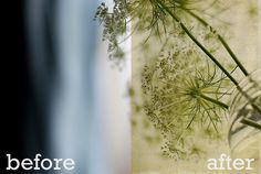 Photography Tutorial: Using Textures to Enhance Your Photos - Live and Love...Out Loud