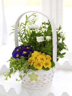 Large Spring Planted Basket with Chocolates