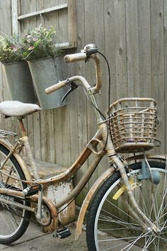.Love antique bikes in the yard