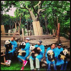 Backstreet Boys with pandas