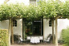 Pergola Kits With Canopy Summer House Garden, Love Garden, Home And Garden, Garden Ideas, Metal Pergola, Wooden Pergola, Pergola Plans, Pergola Kits, Pergola Ideas