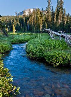 Kings Creek Meadow, Lassen National Forest, California