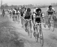 Paris Roubaix archive