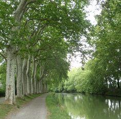 Between Écluse de Castanet and Écluse de Vic, Midi Canal, France