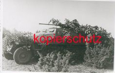 Field modified SdKfz 251/17, using thw 2cm gun som an SdKfz 222 mounted on the hull of a SdKfz 251/1, by Das Reich.