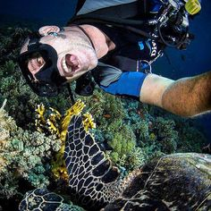 Take a #selfie during your scuba time, and post it with #eudiselfie hashtag : You can win a ticket for #EudiShow 2016 :D #diving #cmas #scubadiving #санктпетербург #ssi #scuba #blowfish #gopro #hawaii #underwater e #animals #fish #natgeo #naturephotography #naturelovers #redsea #sealife #underwaterphotography #wildlife #uwphotography #nature