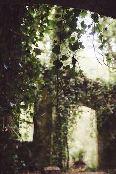 Pinterest: @MagicAndCats ☾ Photography by tashana klonius