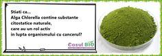 Alga Chlorella contine substante citostatice naturale, care au un rol activ in lupta organismului cu cancerul?