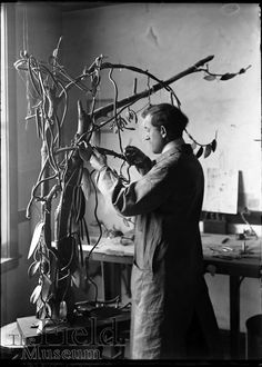 a Vanilla plant model being constructed   1913