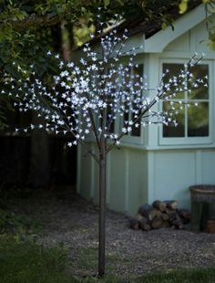 1000 Images About Solar Fairy Lights On Pinterest Solar Fairy Lights Sola