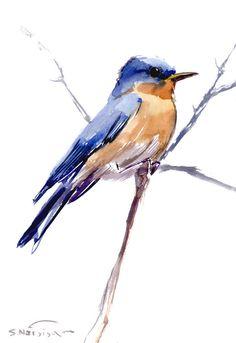 Eastern Bluebird, Original watercolor painting, 12 X 9 in, bluebird lover art, bluebird wall art
