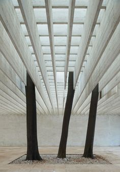 Nordic Pavilion, Venice. Sverre Fehn. Brise-soleil ceiling diffuses daylight evenly into the space.