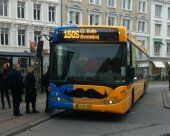 Danish busses honour male cancer awareness month Movember with moustaches on their front panel.