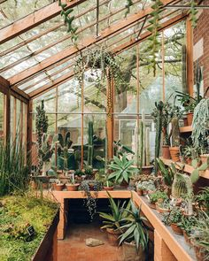 Potting shed greenhouse plans, small greenhouse kits, greenhouse supplies, gree Backyard Greenhouse, Greenhouse Plans, Greenhouse Wedding, Homemade Greenhouse, Cheap Greenhouse, Portable Greenhouse, Greenhouse Attached To House, Small Greenhouse Kits, Greenhouse Frame
