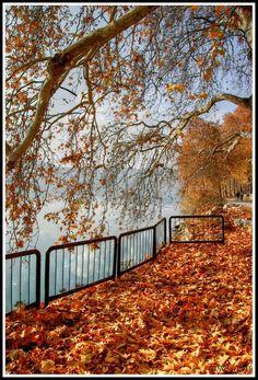 Autumn in Kastoria, Hellas, Macedonia, Greece  by Vasilis Gkikas on panoramio.com