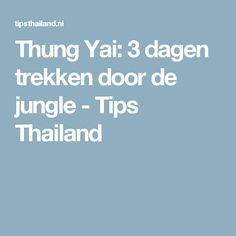 Thung Yai: 3 dagen trekken door de jungle - Tips Thailand