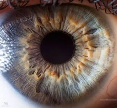 Olho humano com detalhes da íris