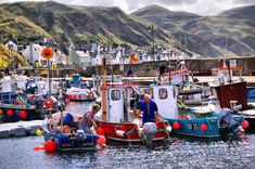 38 Reasons You Should Never Visit Scotland