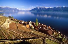 The Lavaux Vineyard Terraces, stretching for about 30 km along the south-facing northern shores of Lake Geneva from the Chateau de Chillon to the eastern outskirts of Lausanne in the Vaud region, cover the lower . Monuments, Oh The Places You'll Go, Places To Travel, Flora, Heritage Center, Lake Geneva, List, World Heritage Sites, Vineyard