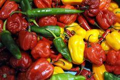 Laihdu nopeammin – nämä ruoat auttavat polttamaan rasvaa