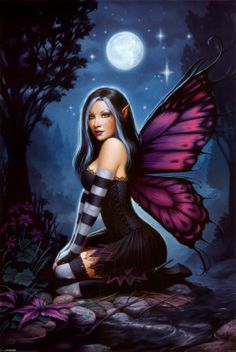 Night Fairy Poster at AllPosters.com