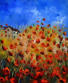 Red poppies 562111, Pol Ledent