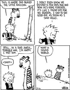 Dealing with death - Calvin and Hobbes