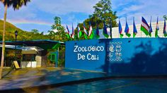 Zoologico de Cali Cali Colombia, Aquarium, Desktop Screenshot, Places To Go, Fair Grounds, Country, Fun, Travel, Parks