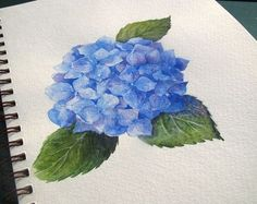 Everyday Artist: Step-by-Step Watercolor: How to Paint a Blue Hydrangea