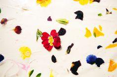 flower and dessert #dessart #dessert #flower #chocolate