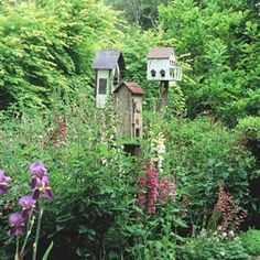 clusters of birdhouses