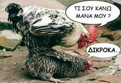 Funny Cartoons, Funny Jokes, Funny Greek Quotes, Just For Laughs, Haha, Funny Pictures, Memes, Animals, Emoticon
