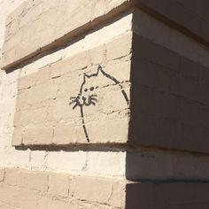 #cat #street art