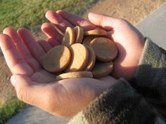 These dog treats are really easy and inexpensive to make.  We made 140 small treats out of one batch!