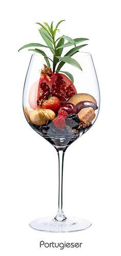 Descrição aromática da variedade: PORTUGIESER: Kirsche, Brombeere, Pflaume, Mandel, Granatapfel, Erdbeere, Linsen, Estragon, Salmiakpastille