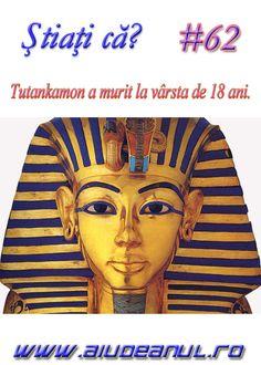 Ancient Egypt, Good Music, Mystic, Creatures, 1, Princess Zelda, Fictional Characters, Image, Google