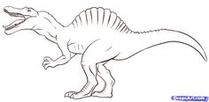 How Draw Spinosaurus Step Dinosaurs Animals Free