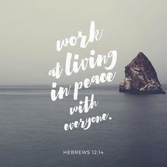 Make every effort to live in peace with everyone and to be holy.