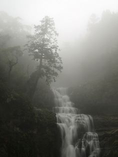 Misty Mountain Fall  / Sanlinsi, Taiwan