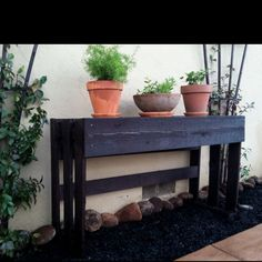 Pallet- cut in half ... Made a table for my plants!!!