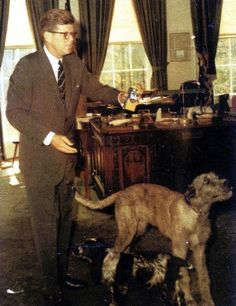 John F. Kennedy and Wolfie (Mixed Breed) and Shannon (Irish Cocker Spaniel) | Counting Down The 18 Cutest Presidential Dogs Of AllTime