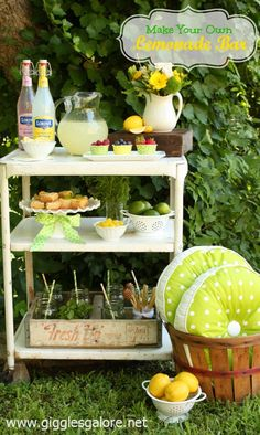 Make Your Own Lemonade Bar.Barra de Limonada para evento en el verano caluroso.