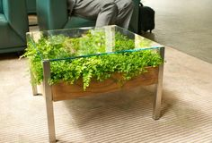 Fill Your Home With Greenery With The Living Table - Design Milk Terrarium Table, Planter Table, Planters, Patio Table, Wood Table, Dining Table, Green Coffee Tables, Glass Top Coffee Table, Green Table