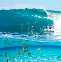 Ride wave!