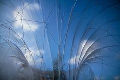 The Horticultural Spa | Loop.pH