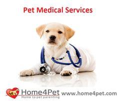 http://home4pet.com/Pet-Services/Pet-Medical-Care