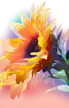 Pretty sunflower painting inspiration, would be lovely watercolor, acrylic or oil painting. Sunflower Art, Watercolor Sunflower, Pastel Watercolor, Watercolor Video, Arte Floral, Painting Inspiration, Art Photography, Drawings, Artwork
