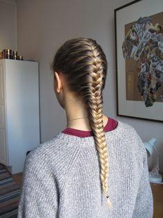 Elegant french fishtail braid